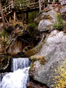 Bridge at Lost Gorge